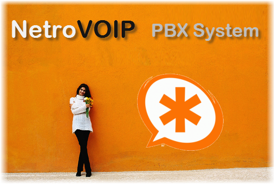 NetroVOIP Thailand